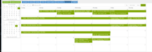 A screenshot of calendar feature, a part of the schedule tool, in the C2P App